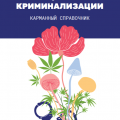 pocket guide ru